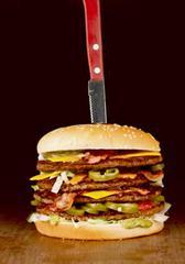 101884 10 2016 mitanyt burgeri